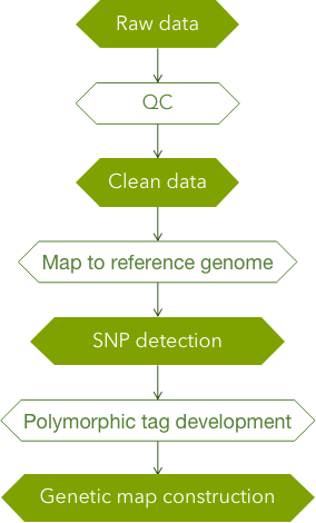 CD Genomics Genetic Map Analysis Pipeline - CD Genomics.