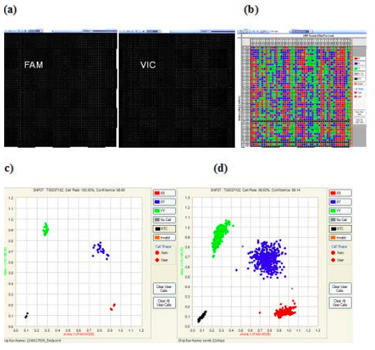 SNP Genotyping data analysis using nanofluidic Dynamic Arrays.