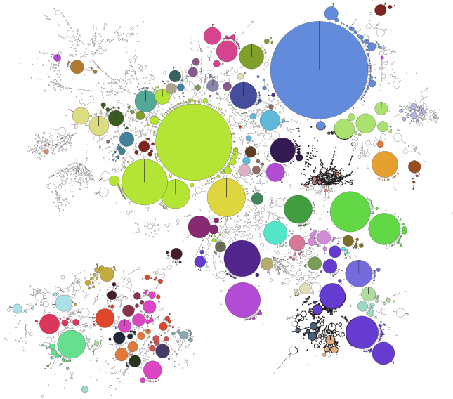 GrapeTree visualization of genetic clusters.
