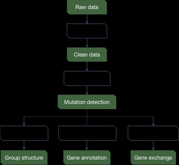 CD Genomics Group Evolution Analysis Pipeline - CD Genomics.