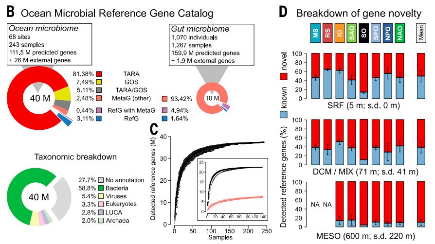 Fig 2. Tara Oceans captures novel genetic diversity in the global ocean microbiome.