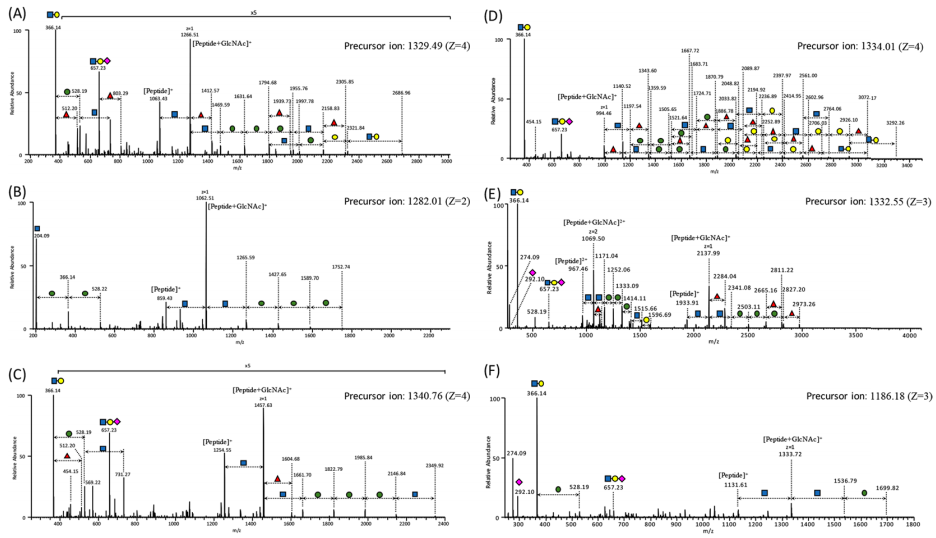 MS/MS spectra of the major glycoforms of glycopeptides covering six N-glycosylation sites.