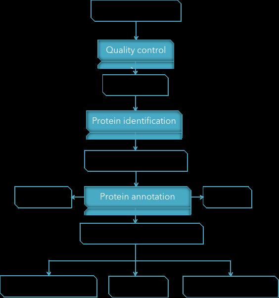 CD Genomics quantitative proteomics data analysis Pipeline - CD Genomics.