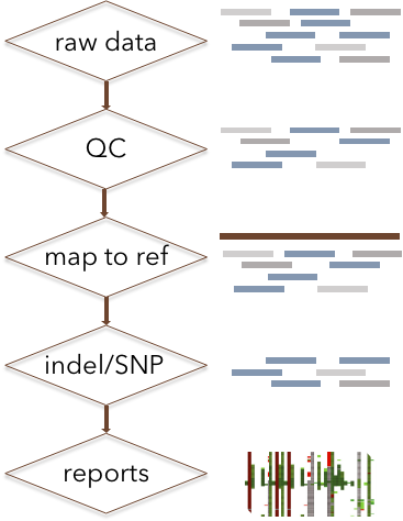Pipeline for target area sequencing data analysis - CD Genomics