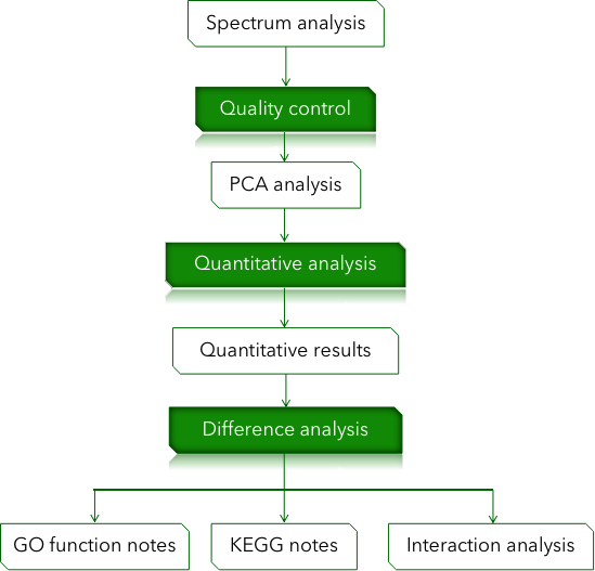 CD Genomics quasi-targeted metabolomics data analysispipeline - CD Genomics.