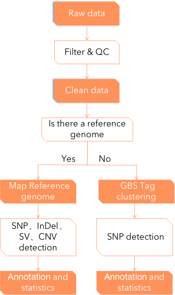 Pipeline of variant detection and analysis - CD Genomics