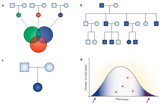 Strategies for finding disease-causing rare variants using exome sequencing.
