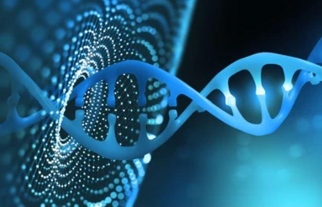 3 Methodological Initiatives for Metagenomics Bioinformatics Analysis