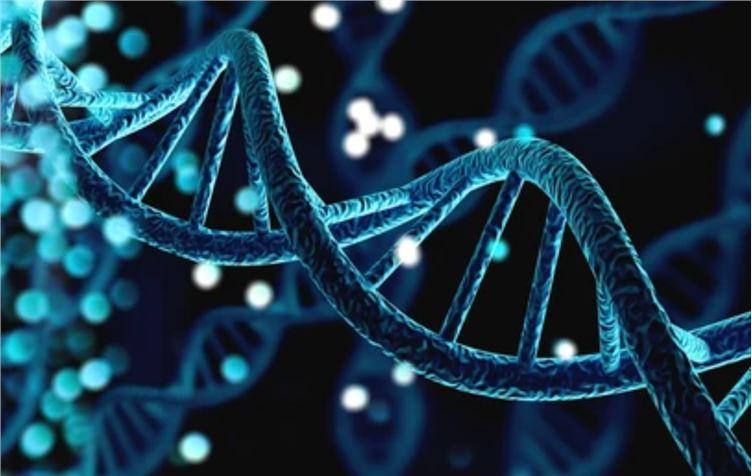 Bioinformatics Basics: Alignment of Next-Generation Sequencing Reads