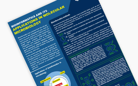 Bioinformatics And Its Application In Molecular Microbiology