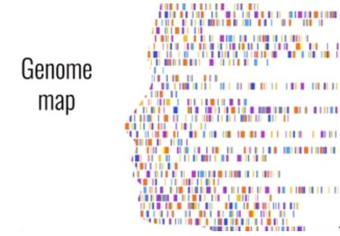 Gene Mapping: Introduction, Approaches, and Data Analysis